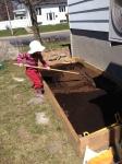 Les semis extérieurs aupotager